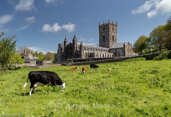 p161 - Pembrokeshire p/c catalogue