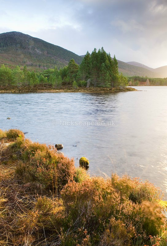 Loch Gamhna bathed in light   Aviemore   Cairngorms Photo Gallery   Scotland