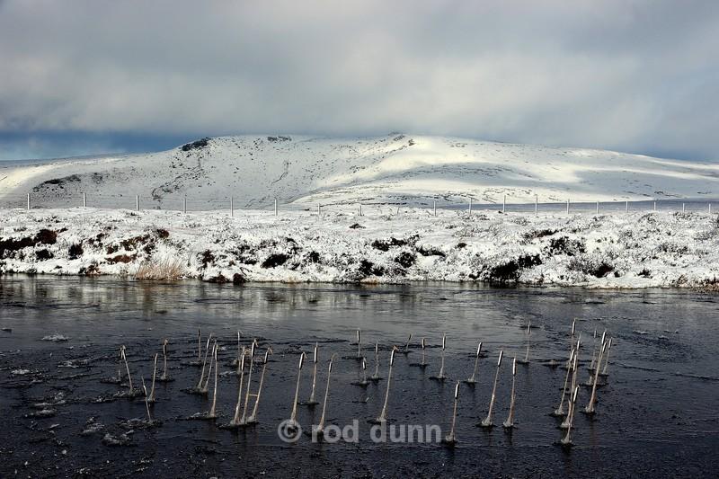 Frozen bulrush, Snake summit - Peak District